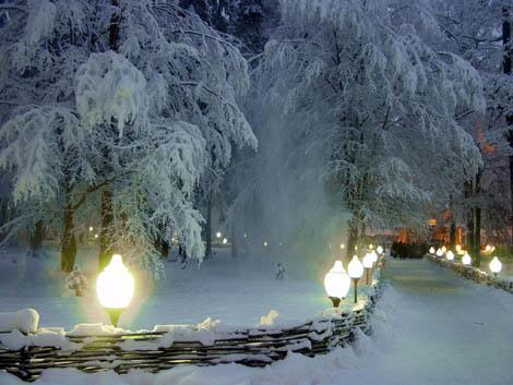 Снежная королева пальто зимний