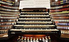 Unique organ Magnus Silesia Royal