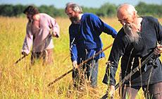 Sporovsky Hay Harvest Festival