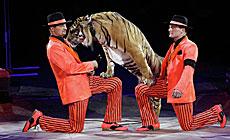 Circus of the Zapashnys Brothers