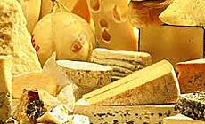 First Cheese Fest near Minsk