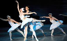 Ballet Summer in Bolshoi Theater project