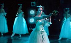 Ballet Summer at       the Bolshoi