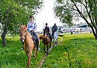 Першы конны паход Магілёў-Баркалабава