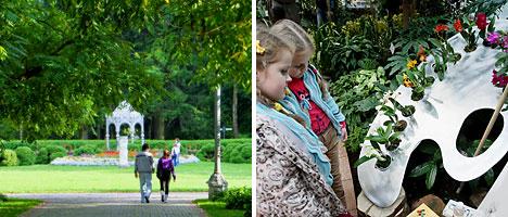 Ботанический сад НАН Беларуси