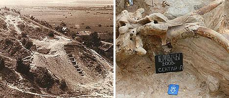 Археологические раскопки в деревне Юровичи и останки мамонта