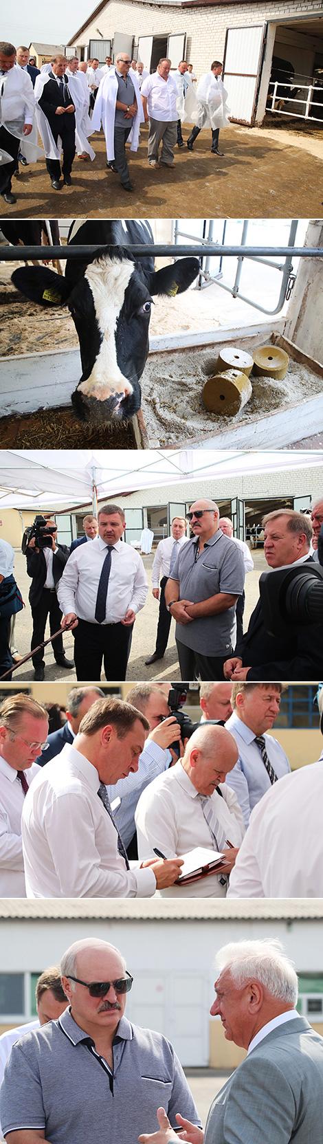 Lukashenko visits struggling farm Kossovo