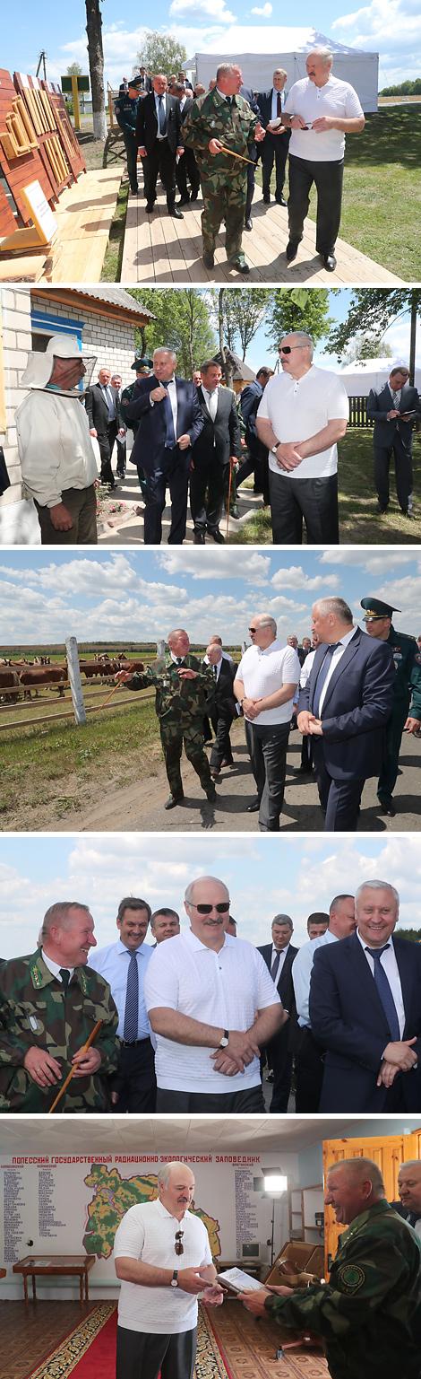 Лукашенко отмечает прогресс в реабилитации пострадавших от радиации территорий