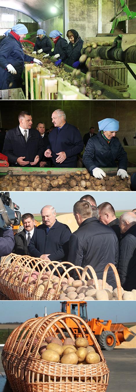 Рабочая поездка Александра Лукашенко в Клецкий район Минской области