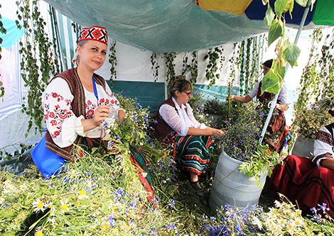 Kupalye festival in Alexandria