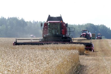 Belarus president urges to step up harvesting campaign