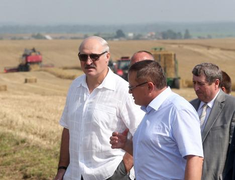 Лукашэнка даручыў нарасціць тэмпы ўборачнай